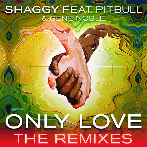 Only Love (The Remixes) by Shaggy