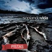 Soplando Vida (Pistas) by Jesús Adrián Romero