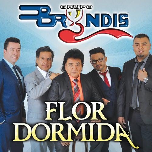 Flor Dormida by Grupo Bryndis