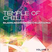 Temple Of Chill, Vol. 3 (Relaxing Meditation & Chillout Songs) by Various Artists