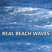Real Beach Waves by Ocean Sounds Pros