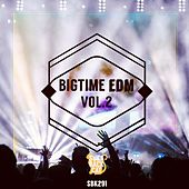 Bigtime EDM, Vol. 2 by Various Artists