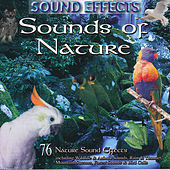 Sounds Of Nature by Master Sound