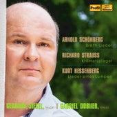 Schoenberg, R. Strauss & Hessenberg: Lieder by Gerhard Siegel