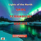 Lights of the North by Volker Hartung