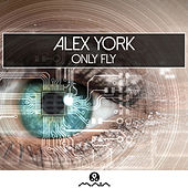 Only Fly by Alex York
