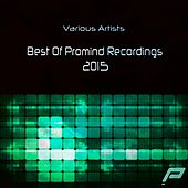 Best Of Promind Recordings 2015 - EP by Various Artists