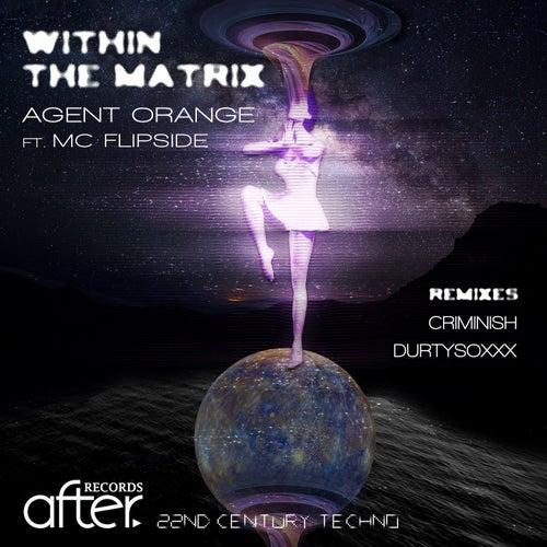 Within The Matrix (feat. MC Flipside) by Agent Orange