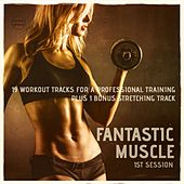 Fantastic Muscle, Vol. 1 (20 Workout Tracks For A Professional Training) by Various Artists