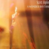A Wonder Rhythm (Remastered) von Scott Joplin