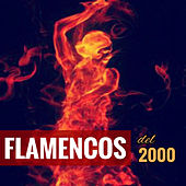 Flamencos del 2000 by Various Artists