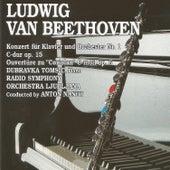 Ludwing van Beethoven by Radio Symphony Orchestra Ljubljana