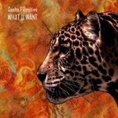 What U Want - Single by Sasha Primitive