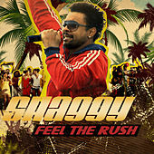 Feel The Rush by Shaggy