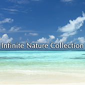 Infinite Nature Collection by Various Artists