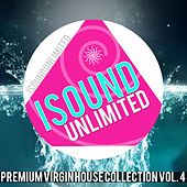Premium Virgin House Collection, Vol. 4 by Various Artists