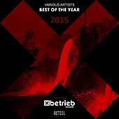 Best Of The Year 2015 by Various Artists