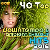 40 Top Downtempo & Ambient Chillout Hits 2016 (Best Of Psybient, Lounge, World, TripHop, Dub & Bass) by Various Artists