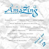 Best Of Amazing Records Vol. 2 by Various Artists