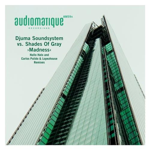 Madness (Hallo Halo and Carlos Pulido & Lopezhouse Remixes) by Djuma Soundsystem