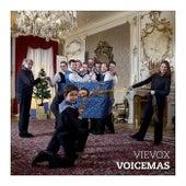 Voicemas by VieVox