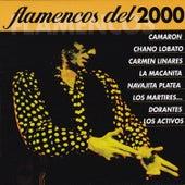 Flamencos del 2000 Vol. 2 by Various Artists