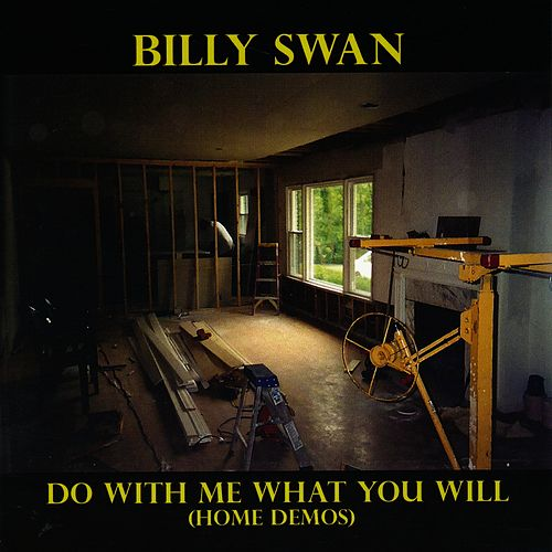 Do With Me What You Will by Billy Swan