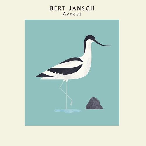 Avocet by Bert Jansch