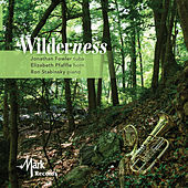 Wilderness by Elizabeth Pfaffle