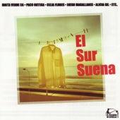 El sur suena by Various Artists
