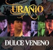 Dulce Veneno by Uranio