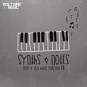 Synths and Notes 28 by Various Artists