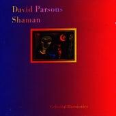 Shaman by David Parsons