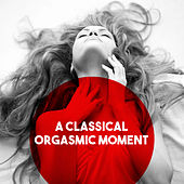 A Classical Orgasmic Moment by Various Artists