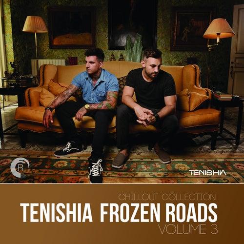 Frozen Roads, Vol. 3 - EP by Tenishia