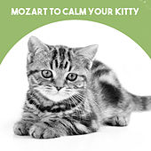 Mozart to calm your Kitty by Various Artists