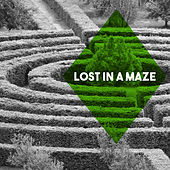 Lost in a Maze by Various Artists