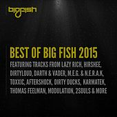 Best of Big Fish 2015 by Various Artists
