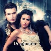Unde-I Dragostea by Liviu Hodor