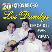 20 Éxitos de Oro by Los Dandys