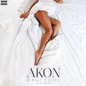 Want Some (feat. DJ Chose) von Akon
