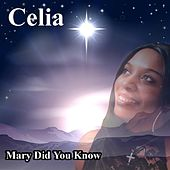 Mary Did You Know by Celia