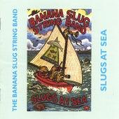 Slugs At Sea by Banana Slug String Band