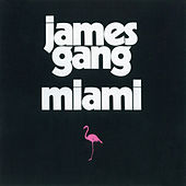 Miami von James Gang
