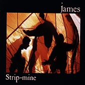 Strip-Mine by James