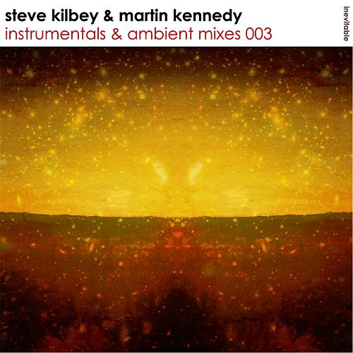 Instrumentals & Ambient Mixes 003 by Steve Kilbey