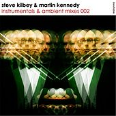 Instrumentals & Ambient Mixes 002 by Steve Kilbey