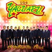 El Patrón Ya Llegó by Los Yaguaru de Angel Venegas