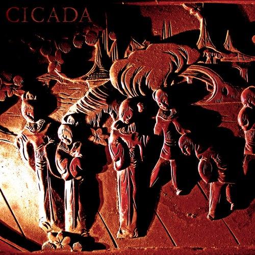 Cicada by Cicada