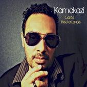 Pobre del Pobre (feat. Kamakazi) von Hector Lavoe